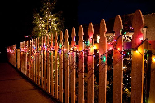Christmas Lights 3085