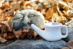 Using a Neti Pot for Allergies
