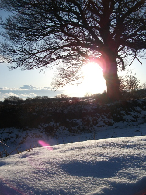 Exmoor snow 1