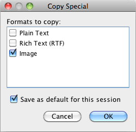 SPSS Copy Special Dialog Box
