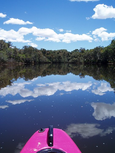 Canning River Reflections