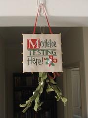 Mistletoe testing here / Lizzie Kate