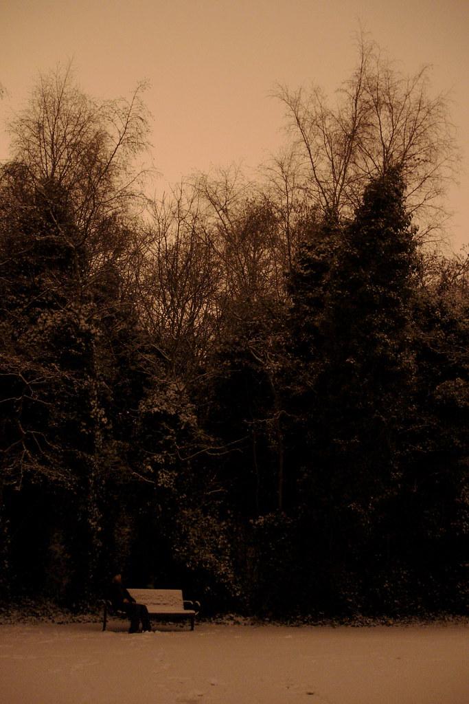 Beneath the noble trees, amen