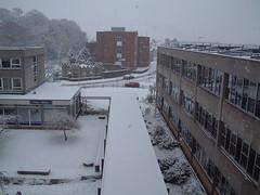 10 01 05_snow_event_0009