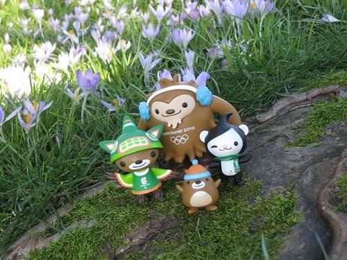Mascots & Crocuses