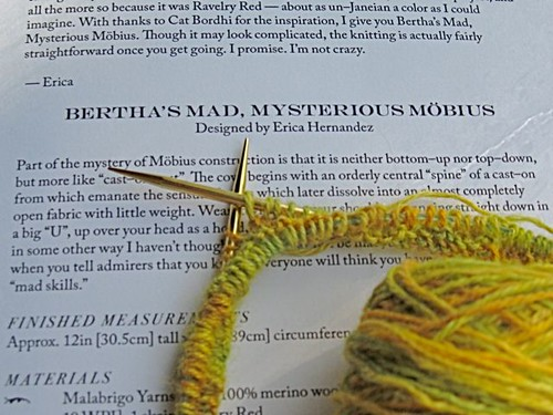 Bertha's Moebius1b