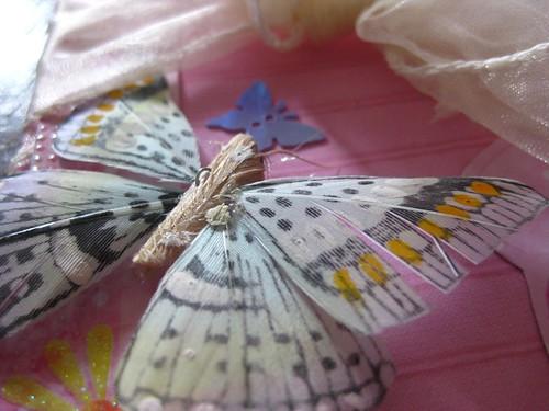 butterfly wedding invitation