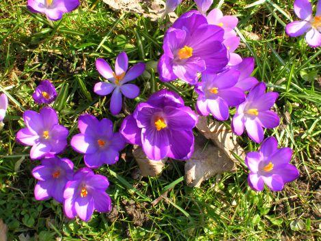 spring5_blog