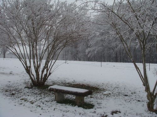 February 12, 2010