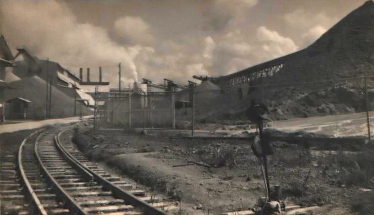 Rail Line Leaving Bauxite Plant, MacKenzie, Guyana