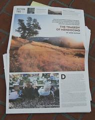 McSweeney's San Francisco Panorama newspaper s...