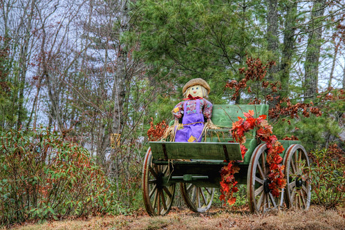 The Scarecrows Harvest