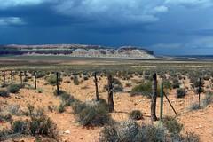 Southwestern Utah Landscape