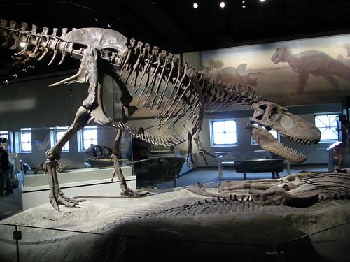Sala de los dinosaurios