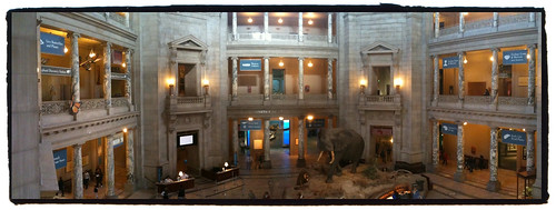 National Museum of Natural History - Taken With An iPhone