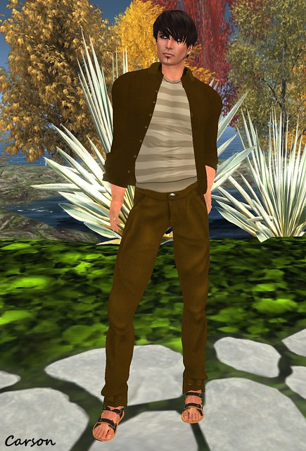 22769 - Brown Linen Shirt, Cafe au Lait Tank and Brown Trousers