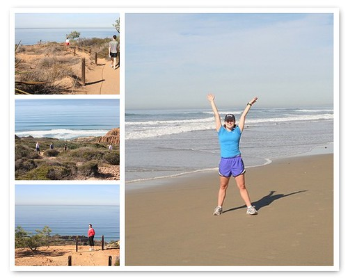 Hiking in Torrey Pines State Reserve Mosaic