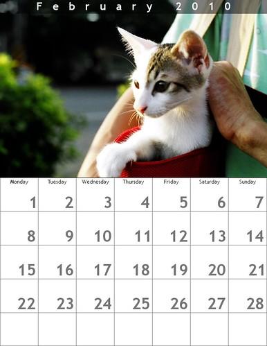簡單線上月曆製作(flickr facebook都可) @ 被貓撿到的幸福 :: 痞客邦