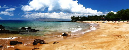 Hawaii Stitch8627_edit