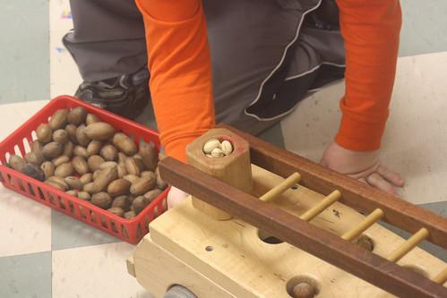 nut hauling