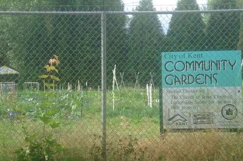社區農園1