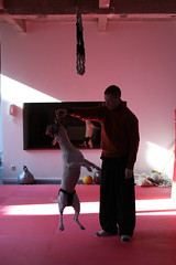 """Kim and his Dog • <a style=""""font-size:0.8em;"""" href=""""http://www.flickr.com/photos/49126569@N07/4521417981/"""" target=""""_blank"""">View on Flickr</a>"""