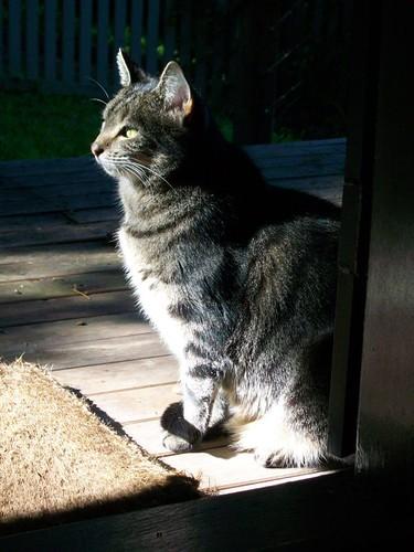 Chloe at door2