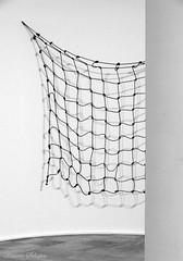 Art net