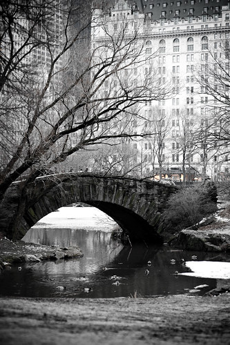 NYCVintage-18 Central Park