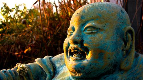 buddha morningfrost-2062
