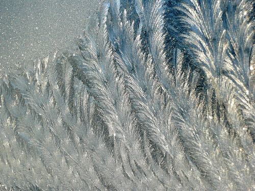 Close-up:  bathroom window frost-feathers