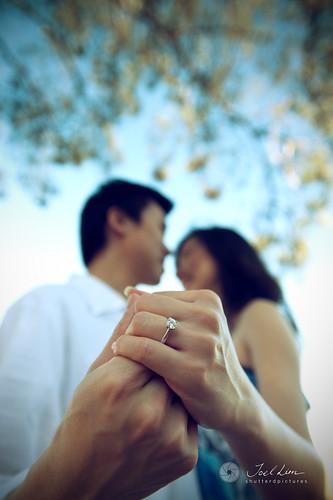 David & Alice Engagement - 12