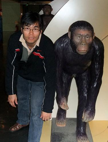 ahji ape