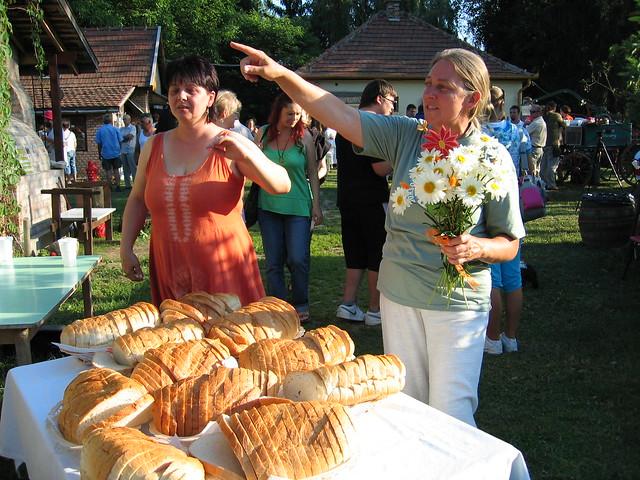 V. Fignár Fesztivál Udvar, Dubicsány 2011 096