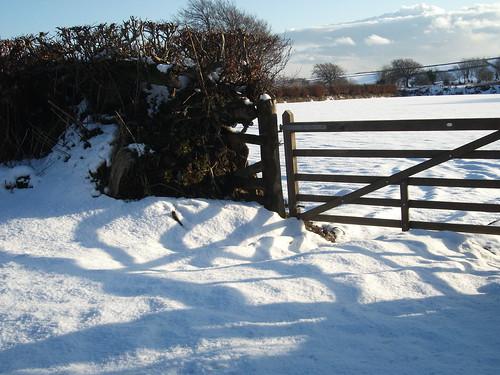 Exmoor snow 3