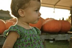 dylan pumpkins