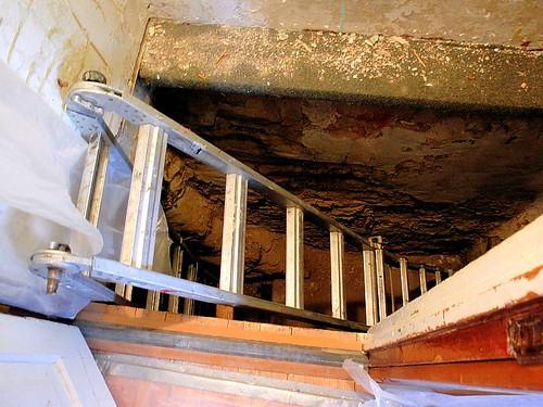 cellar stairs.JPG