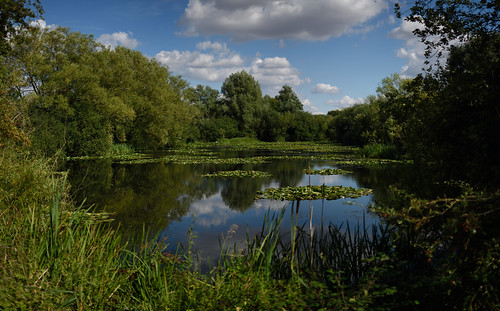 """Emberton Country Park panorama • <a style=""""font-size:0.8em;"""" href=""""http://www.flickr.com/photos/96019796@N00/33074944516/"""" target=""""_blank"""">View on Flickr</a>"""