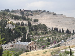 Mount of Olives from the Ramparts Walk