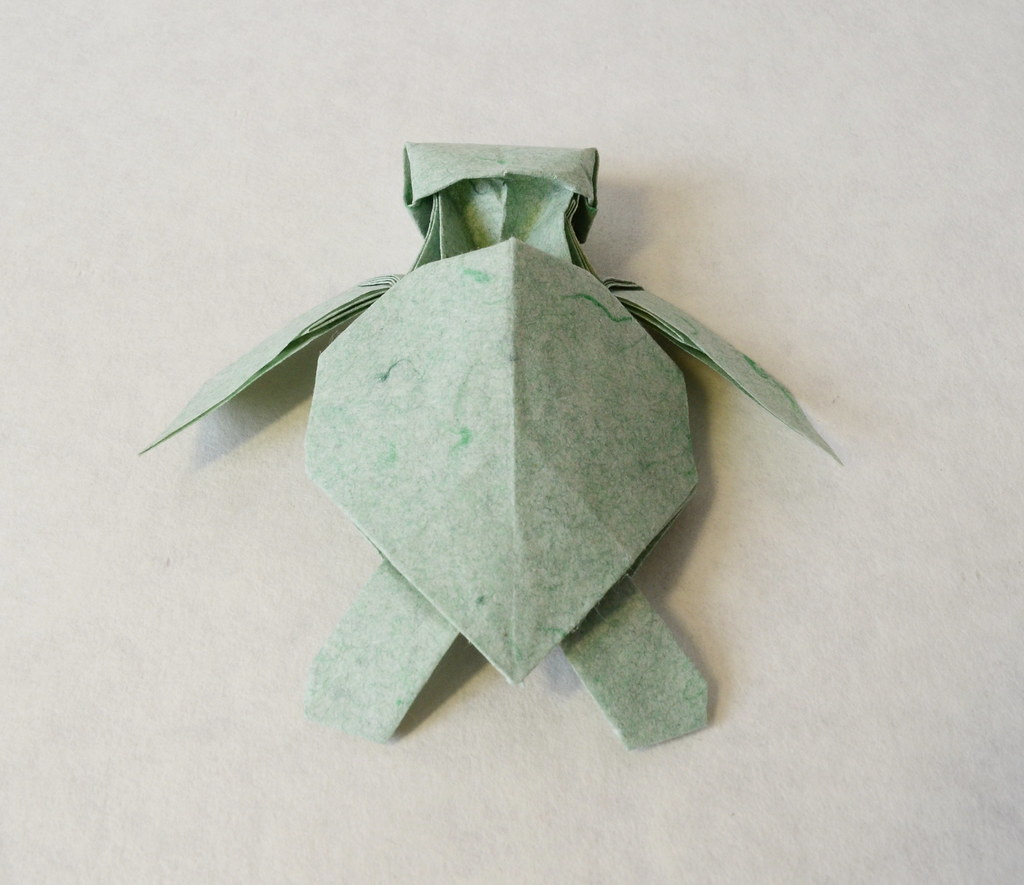 paper origami turtle diagram animal skin cell the world 39s best photos of and flickr