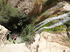 Ein Gedi Nahal David pools