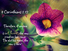 """2 Corinthians 5:17 • <a style=""""font-size:0.8em;"""" href=""""http://www.flickr.com/photos/95703371@N00/9714880499/"""" target=""""_blank"""">View on Flickr</a>"""