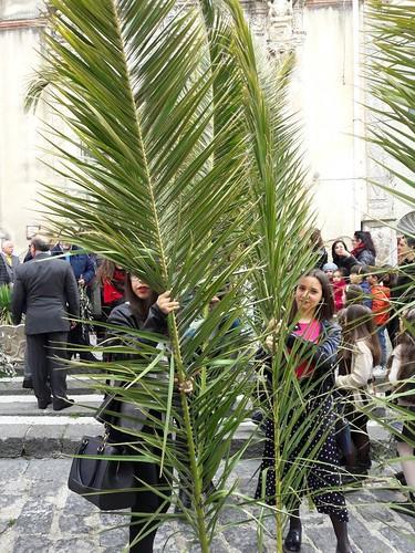 Domenica palme 2017 (26)