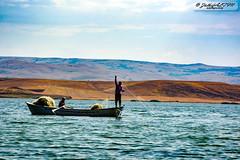 Teknede Balıkçılık