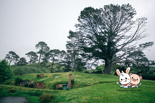 Hobbiton, Matamata New Zealand