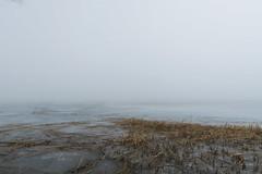 Balaton in fog 3