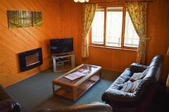 Foxgloves - lounge