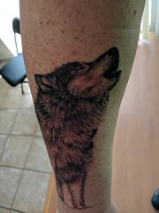 National Park Sleeve Tattoo