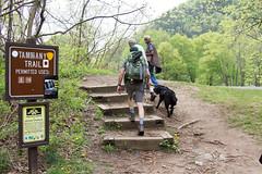 Tammy trail