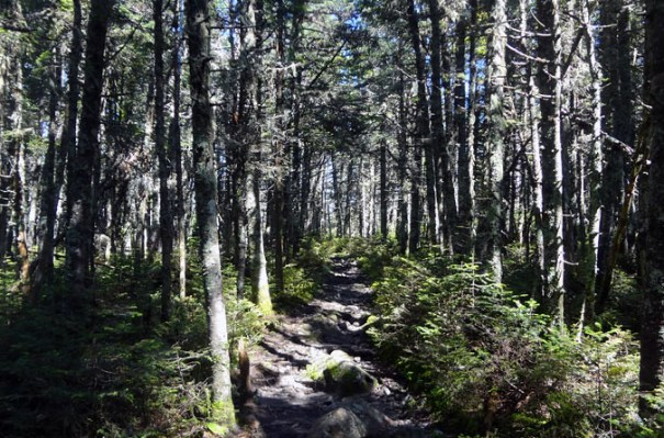Pemi Loop Hike on Franconia Ridge